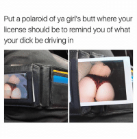 Butt, Driving, and Girls: Put a polaroid of ya girl's butt where your  license should be to remind you of what  your dick be driving in Only If You Driving In Her Butt Now..😏😏😂 lmfao