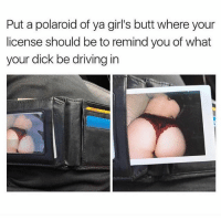 Butt, Driving, and Girls: Put a polaroid of ya girl's butt where your  license should be to remind you of what  your dick be driving in