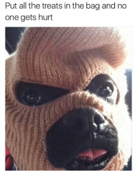Memes, Pugs, and 🤖: Put all the treats in the bag and no  one gets hurt  eftu PUG LIFE @fluffypiqasso