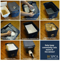 Animals, Boxing, and Community: Put the cooler inside the tote & trace a  6-inch-diameter hole on the cooler.  Put the lid on the cooler.  Trace a hole six inches in diameter  Cut out the hole using the box cutter  Put the lid on the tote. READY!  Cut out the hole with a box cutter  Add straw in and around  the cooler for extra insulation.  Help keep  community cats  Warm in  the winter!  BC  SPCA  SPEAKING FOR ANIMALS It's #NationalFeralCatDay! Celebrate by making a difference for the cats in your community.   Do you feed an unsocialized outdoor cat? Make sure they are warm this winter! This simple, low-cost solution provides a place for cats to stay warm and avoid suffering from frostbite. Find full instructions at: http://www.spca.bc.ca/assets/documents/youth/activities/winter-cat-shelter.pdf.  What do you do to keep unsocialized outdoor cats warm?