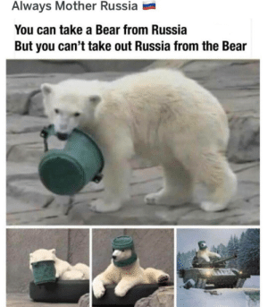Put the RUSSIA INTO THE BEAR by DunderMuffinn MORE MEMES: Put the RUSSIA INTO THE BEAR by DunderMuffinn MORE MEMES