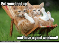 Have a great weekend!: Put your feet up  and have a good weekend Have a great weekend!