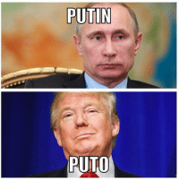 Memes, Putin, and World: PUTIN  AUTO I know some people are new to the world of politics , so I thought I'd create this simple guide which explains it clearly @realdonaldtrump #pelosmelapela