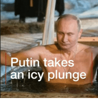 Memes, Vladimir Putin, and Epiphany: Putin takes  an icy plunge It looks pretty cold! Russian President Vladimir Putin took the plunge into icy water to mark the feast of Epiphany. orthodox epiphany ritual russia putin lakeseliger moscow bbcnews