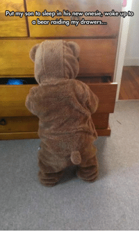 Bear, Her, and Son: Putmy son to sleepin hisnew onesie, woke upito  a bear raiding my drawers  ... <p>A Bear Broke Into Her Room.</p>