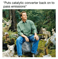 Memes, Boost, and Nature: Puts catalytic converter back on to  pass emissions* I am at one with nature 🙌🏻 . . carmemes jdm turbo boost tuner carsofinstagram carswithoutlimits carporn instacars supercar carspotting supercarspotting stance stancenation stancedaily racecar blacklist cargram carthrottle drift itswhitenoise amazingcars247