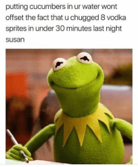 Memes, Water, and Vodka: putting cucumbers in ur water wont  offset the fact that u chugged 8 vodka  sprites in under 30 minutes last night  susan 😊 Rp my Hun @_thequeenofeverything_ @_thequeenofeverything_ goodgirlwithbadthoughts 💅🏼