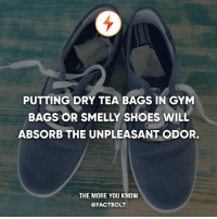 Gym, Memes, and Shoes: PUTTING DRY TEA BAGS IN GYM  BAGS OR SMELLY SHOES WILL  ABSORB THE UNPLEASANT ODOR.  THE MORE YOU KNOW  @FACTBOLT 👍