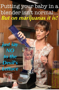 "Blessed, Children, and Drugs: Putting your baby in a  blender isn't normal  But on marijuanas it is!  ust say  NO  to the  ev  uce Erica White, aged 34 from The Miami, was a doting mother of two, until she tried her first cannibas cigarette...   After her Mexican gardener tricked her into ""toking"" on a ""joint"", Erica was instantly possessed by Satan, and proceeded to blend her youngest child into a vodka and infant-based cocktail.   Tragically, incidents happen like this are commonplace for the poor, innocent children born to stoners. Studies show that parents who smoke mariguana are more than 85% more likely to put their baby in a blender than their drug-free counterparts.   But together we can put an end to this evil practice ! Pothead parents, I urge you to save your children from your satanic lifestyle! Say NO to marijuanas and murdering your children... and instead say YES to Lord Jesus ! : - )  May God bless and keep you. - Margaret"