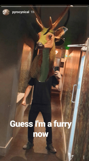 What?: pyrocynical 1h  Guess I'm a furry  now What?