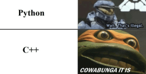 Break, Computer, and Python: Python  Wait. That's illegal.  COWABUNGA ITIS When I code something that will obviously break my computer