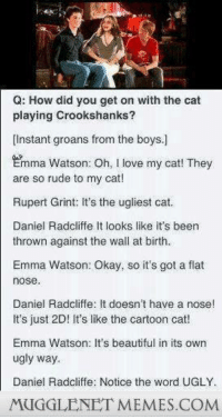 Oh my gosh, were these kids just born and raised to become the golden trio? Because seriously, the actors=the characters so perfectly it's scary at times, but in a good way: Q: How did you get on with the cat  playing Crookshanks?  Instant groans from the boys.]  Emma Watson: oh, love my cat! They  are so rude to my cat!  Rupert Grint: It's the ugliest cat.  Daniel Radcliffe It looks like it's been  thrown against the wall at birth.  Emma Watson: Okay, so it's got a flat  nose  Daniel Radcliffe: It doesn't have a nose!  It's just 2D! It's like the cartoon cat!  Emma Watson: It's beautiful in its own  ugly way.  Daniel Radcliffe: Notice the word UGLY.  MUGGLENETMEMES COM Oh my gosh, were these kids just born and raised to become the golden trio? Because seriously, the actors=the characters so perfectly it's scary at times, but in a good way