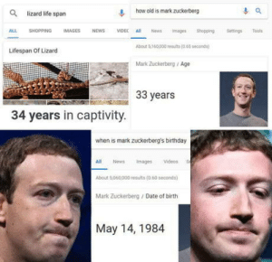 Birthday, Life, and Mark Zuckerberg: Q  lizard life span  l, how old is mark zuckerberg  ALL SHOPPING IMAGES NEWS VIDEC All News Images Sopping Settings Tools  bout 8 160000 reu (o.65s  Lifespan Of Lizard  Mark Zuckerberg/Age  33 years  34 years in captivity.  when is mark zuckerberg's birthday  All News mages Videos  About 5060,000 results(060 seconds)  Mark Zuckerberg Date of birth  May 14, 1984 If he doesnt die the next month, we know hes a robot