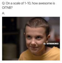 Orange Is the New Black, Oitnb, and Scale: Q: On a scale of 1-10, how awesome is  OITNB?  IG: OITNBMEMES 😭😭😭😭