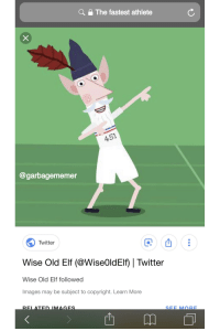Yo this dood faster than Sanic.: Q  The fastest athlete  @garbagememer  Twitter  Wise Old Elf (@WiseOldElf) | Twitter  Wise Old Elf followed  mages may be subject to copyright. Learn More  SEE MORE Yo this dood faster than Sanic.
