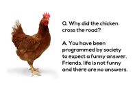 The Institute of Non-Satire: Q. Why did the chicken  cross the road?  A. You have been  programmed by society  to expect a funny answer.  Friends, life is not funny  and there are no answers. The Institute of Non-Satire