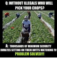 Memes, 🤖, and Who: Q: WITHOUT ILLEGALS WHO WILL  PICK YOUR CROPS  A: THOUSANDS OF MINIMUM SECURITY  INMATES SITTING ON THEIR BUTTS WATCHING TV  PROBLEM SOLVED!!!