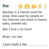 Hilarious Meaning: Bae  Bae/bae is a Danish word for  poop. Also used by people on  the internet who think it means  baby, sweetie etc.  Bae I love u so much  Brian, my bae  I just made a bae