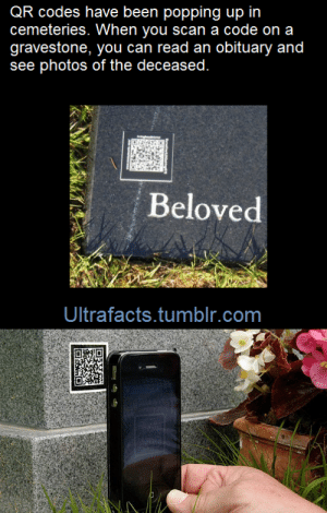 """Apple, Complex, and Facts: QR codes have been popping up in  cemeteries. When you scan a code on a  gravestone, you can read an obituary and  see photos of the deceased.  vng t  Beloved  Ultrafacts.tumblr.com bedlamsbard:  riteofswing:  ultrafacts:    (Fact Source) for more facts, follow Ultrafacts     2000 years later: """"The strange glyphs appearing on gravestones from the early 21st century onward remain a mystery. These astoundingly complex patterns (no two exactly the same) have been found on many other 21st century artifacts, and are believed to have religious significance. Recovered images suggest they were probably sacred to the ancient North American god, Apple, and were meant to ensure that the departed would continue to be financially successful in the afterlife.""""  As an archaeologist I can confirm that that is pretty much exactly what will happen in the future."""