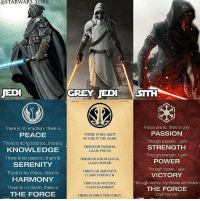 Jedi, Memes, and Death: QSTARWARS LORE  JEDI  GREY EDI STH  Peace is a lie, there is only  There is no emotion, there is  PEACE  There is no Ignorance, there is  KNOWLEDGE  There is no passion, there is  SERENITY  There is no chaos, there is  HARMONY  There is no death, there is  THE FORCE  THERE IS NO LIGHT  WITHOUT THE DARK  PASSIONN  Through passion, I gain  STRENGTH  Through strength, I gain  POWER  Through power, I gain  VICTORY  Through victory, my chains are broken  THE FORCE  shall free me  THROUGH PASSION,  I GAIN FOCUS  THROUGH KNOWLEDGE,  I GAIN POWER  THROUGH SERENITY,  I GAIN STRENGTH  THROUGH VICTORY,  I GAIN HARMONY  THERE IS ONLY THE FORCE ▪️Go give a follow to @starwars_lore for more awesome starwars content▪️