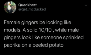 Both be lookin like a snack though: Quackbert  @get_mcducked  Female gingers be looking like  models. A solid 10/10 , while male  gingers look like someone sprinkled  paprika on a peeled potato Both be lookin like a snack though