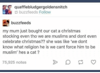 Memes, Muslim, and Buzzfeed: quafflebludgergoldensnitch  buzzfeeds Follow  buzzfeeds  my mum just bought our cat a christmas  stocking even tho we are muslims and dont even  celebrate christmas?? she was like 'we dont  know what religion he is we cant force him to be  muslim hes a cat  75,925 notes