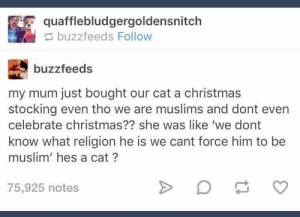 Christmas, Muslim, and Merry Christmas: quafflebludgergoldensnitch  buzzfeeds Follow  buzzfeeds  my mum just bought our cat a christmas  stocking even tho we are muslims and dont even  celebrate christmas?? she was like 'we dont  know what religion he is we cant force him to be  muslim' hes a cat?  75,925 notes Merry Christmas, Fluffy
