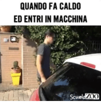 Memes, Video, and 🤖: QUANDO FA CALDO  ED ENTRI IN MACCHINA  Scue Qualcuno spenga il sole 😭 Grazie a @inullafacenti per il video estate caldo macchina