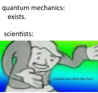 Tumblr, Best, and Blog: quantum mechanics:  exists.  scientists:  excuse me what the fuck awesomesthesia:  Quantum mechanics at its best