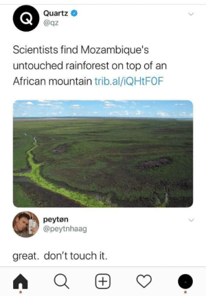 Quartz, Top, and Touch: Quartz  @qz  Scientists find Mozambique's  untouched rainforest on top of an  African mountain trib.al/iQHtFOF  peytøn  @peytnhaag  great. don't touch it.  (+)