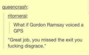 "Can i post?: queencrash:  ritornerai:  What if Gordon Ramsay voiced a  GPS  ""Great job, you missed the exit you  fucking disgrace."" Can i post?"