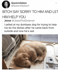 Bitch, Memes, and Sorry: Queenofjokes  @Queenofjokes1  BITCH SAY SORRY TO HIM AND LET  HIM HELP YOU  Jesse @JesssTheDreamer  i yelled at my dumbass dog for trying to help  me do the dishes after he came back from  outside and now he's sad 😍😍Cute doggo 🐶