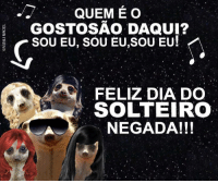 Suricate seboso · Pt-Br (Brazilian Portuguese), International, and Dia   QUEME O GOSTOSAO 95839f09b3
