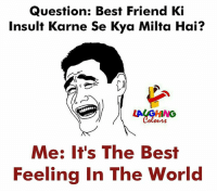best friend: Question: Best Friend Ki  Insult Karne Se Kya Milta Hai?  Me: It's The Best  Feeling In The World