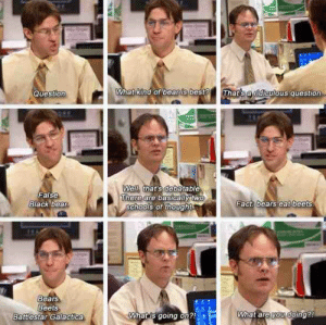Question! I still go nuts on this scene.: Question  What kind of bear is best  thats a nd culous question  ell, that's debatable  here are basicallytw  False  ack bear  Eact: bears eat beets  sChools of thought  Bears  Beets  Battlestar Galactica  Wnatis going on  What are you coing? Question! I still go nuts on this scene.