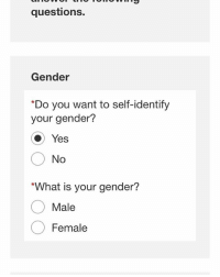 When applying at a job and I see this...: questions.  Gender  *Do you want to self-identify  your gender?  Yes  O No  *What is your gender?  Male  Female When applying at a job and I see this...