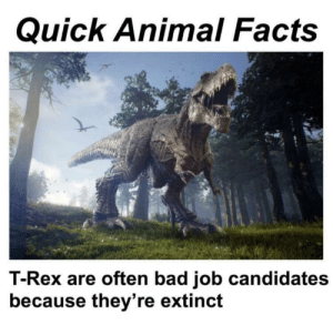 Bad, Facts, and Animal: Quick Animal Facts  T-Rex are often bad job candidates  because they're extinct Nice