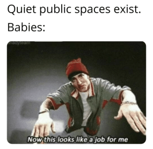 True, Quiet, and Dank Memes: Quiet public spaces exist.  Babies:  Bdyteam  Now this looks like a job for me 😂😂😂this is so true😂😂😂