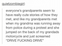"Grandma, Memes, and Protest: quiet zombiegirl:  everyone's grandparents seem to  have really cute stories of how they  met, and like my grandparents met  when my grandma was running away  from police during a protest and she  jumped on the back of my grandads  motorcycle and just screamed  ""DRIVE FUCKING DRIVE"" this is the kind of story i wanna tell my grandkids"