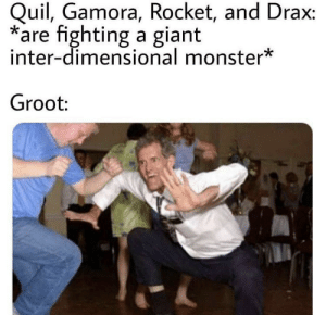 Monster, Giant, and Fighting: Quil, Gamora, Rocket, and Drax:  are fighting a giant  inter-dimensional monster*  Groot: peepeepoopoo