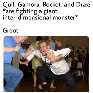Monster, Reddit, and Giant: Quil, Gamora, Rocket, and Drax:  are fighting a giant  inter-dimensional monster*  Groot: Arbulary batteries