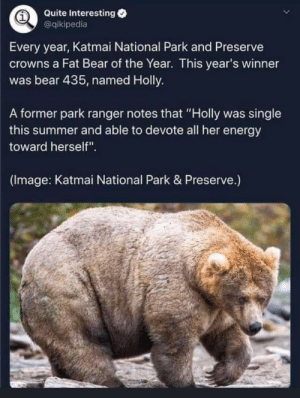"She's a strong independent bear.: Quite Interesting  @qikipedia  Every year, Katmai National Park and Preserve  crowns a Fat Bear of the Year. This year's winner  was bear 435, named Holly.  A former park ranger notes that ""Holly was single  this summer and able to devote all her energy  toward herself"".  (Image: Katmai National Park & Preserve.) She's a strong independent bear."