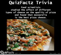 "Food, Pizza, and Target: QunzFactz Trivia  Food scientists  studied the effect of different  types of cheese on the quality of pizza  and found that mozzarella  is the best pizza cheese  uizFactz  UIZFacTZ tumblr com  Photo Credit: Janine <p><a class=""tumblr_blog"" href=""http://quizfactz.tumblr.com/post/96779753006/ajwojtcuk-quizfactz-source-quantification"" target=""_blank"">quizfactz</a>:</p> <blockquote> <p><a class=""tumblr_blog"" href=""http://ajwojtcuk.tumblr.com/post/96417430290/quizfactz-source-quantification-of-pizza"" target=""_blank"">ajwojtcuk</a>:</p> <blockquote> <p><a class=""tumblr_blog"" href=""http://quizfactz.tumblr.com/post/96377257451/source-quantification-of-pizza-baking-properties"" target=""_blank"">quizfactz</a>:</p> <blockquote> <p>Source: Quantification of Pizza Baking Properties of Different Cheeses, and Their Correlation with Cheese Functionality. <em>Journal of Food Science</em>, 2014, <strong>79</strong>: E1528–E1534.</p> </blockquote> <p>My question is where do I become a food scientist? I like food and I like science</p> </blockquote> <p><a href=""http://colleges.findthebest.com/d/o/Food-Science"" target=""_blank"">http://colleges.findthebest.com/d/o/Food-Science</a></p> </blockquote>"