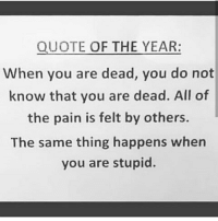💯💯💯: QUOTE OF THE YEAR:  When you are dead, you do not  know that you are dead. All of  the pain is felt by others.  The same thing happens when  you are stupid. 💯💯💯
