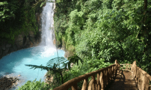 Costa Rica, Water, and Rio: Río Celeste - Costa Rica, water of the gods