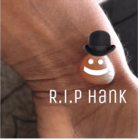 Thank you guys for showing your condolences . Hanks funeral was very sad but I'm glad he's in a better place . Thank you mommy 😪❤️ Dayum: R.1.P Hank Thank you guys for showing your condolences . Hanks funeral was very sad but I'm glad he's in a better place . Thank you mommy 😪❤️ Dayum