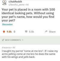 "Anaconda, Animals, and Love: ( r/AskReddit  u/fanciful pants 4d  Your pet is placed in a room with 100  identical looking pets. Without using  your pet's name, how would you find  your pet?  Discussion  9.8k  5.5k  Share  BEST COMMENTS  dracanus 4d  I taught my parrot ""come at me bro"". If i raise my  arms yelling come at me bro he does the same  with his wings and yells back. Follow my other account @x__social_butterfly_x if you love animals!!"