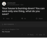 Memes, My House, and Yo: r/AskReddit  u/Pickled Mustard 12m  Your house is burning down! You can  save only one thing, what do you  Save?  Share  Vote  BEST COMMENTS  pm me yo doggos 11m  My house  Reply  Vote