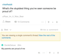 Meirl: r/AskReddit  What's the stupidest thing you've seen someone be  proud of?  u/Roar_Im_A_Nice_Bear  Share 10 Comments  Write a comment  You are viewing a single comment's thread.View the rest of the  comments  DocileDeluxe 20m  My parents are proud of me Meirl