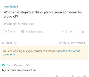 Meirl by drasos759 MORE MEMES: r/AskReddit  What's the stupidest thing you've seen someone be  proud of?  u/Roar_Im_A_Nice_Bear  Share 10 Comments  Write a comment  You are viewing a single comment's thread.View the rest of the  comments  DocileDeluxe 20m  My parents are proud of me Meirl by drasos759 MORE MEMES